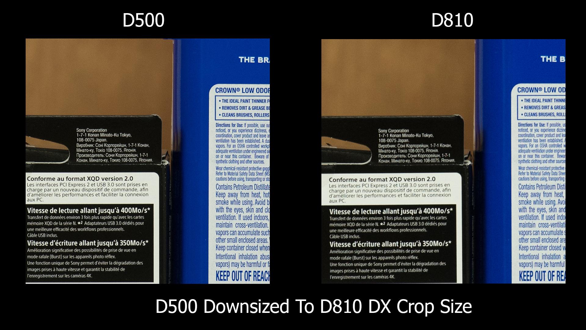 D500 vs D810 (dx) D500 downsampled