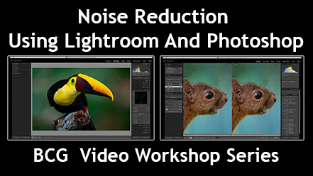 New Video Workshop – Noise Reduction Using LR & PS