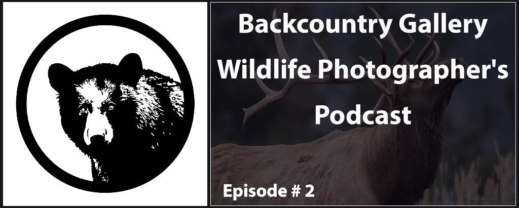 BCG-Podcast-FI-2a.jpg