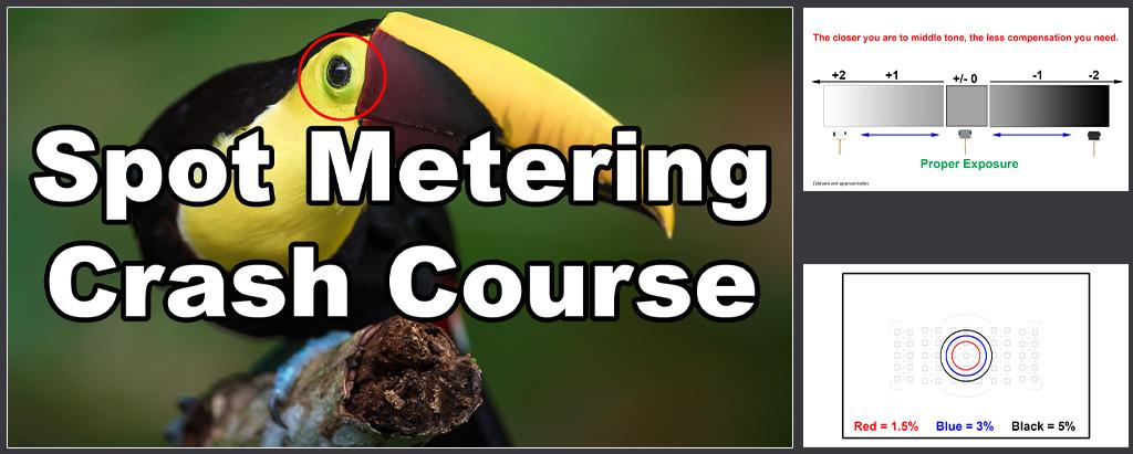 spot-metering-FI.jpg